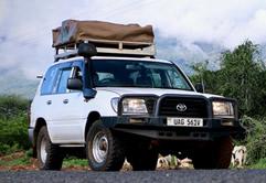 Land Cruiser GX Hire in Uganda